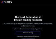 Avis sur BitMEX